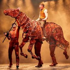 war horse royal national theatre